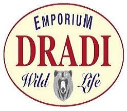 Logo Dradi
